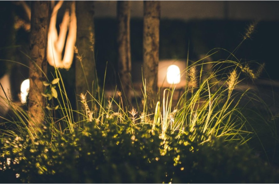 3 Ways to add functional lighting to your backyard